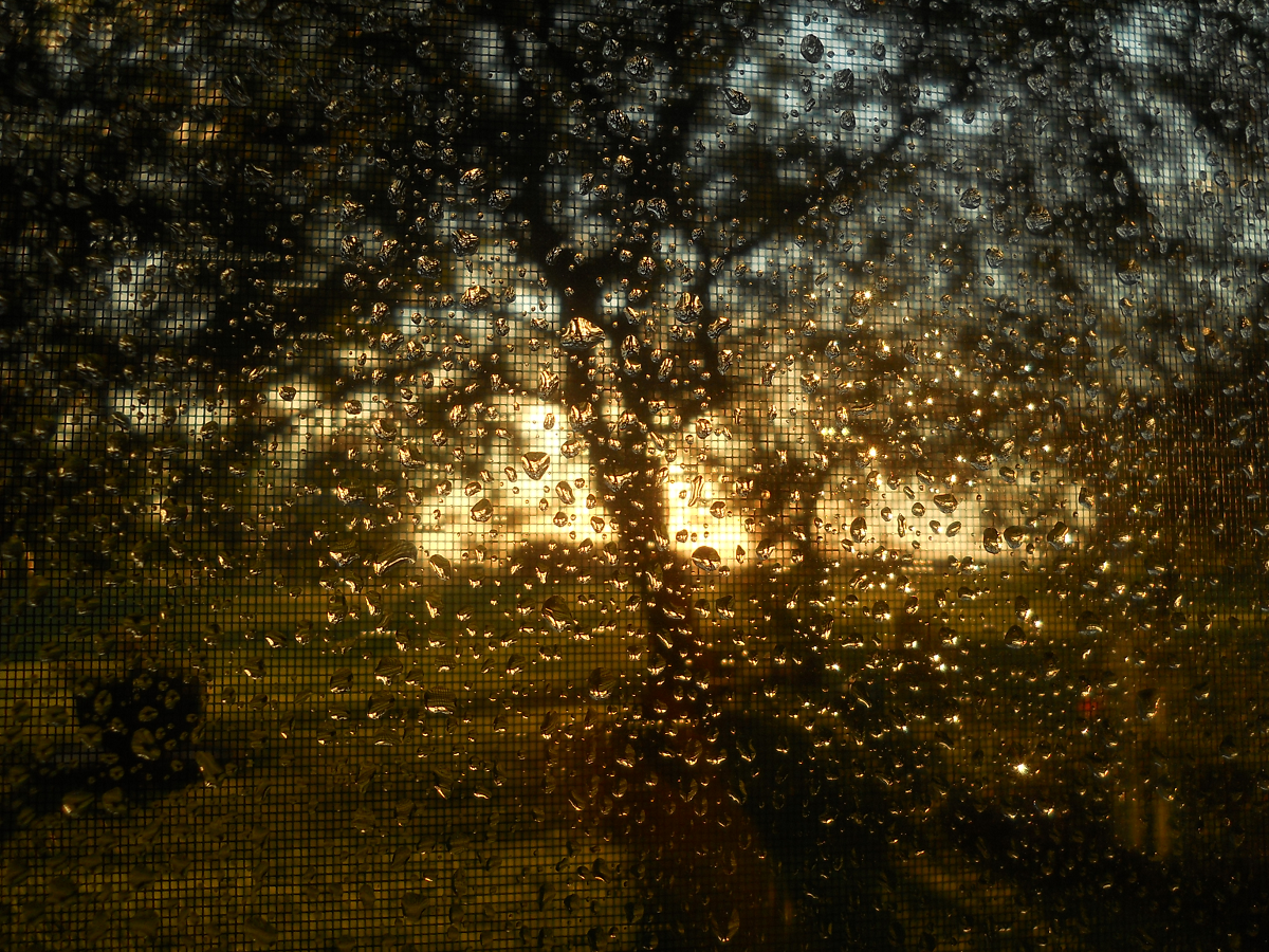 Moustiquaire impressioniste_Impressionist Screen_S